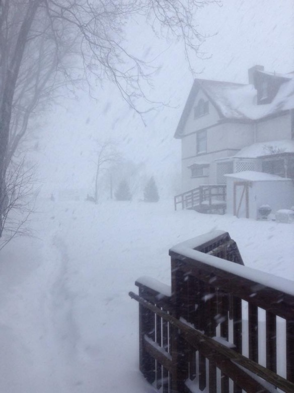 Heather May stepped out her front door on Friday and was greeted by almost white-out conditions.