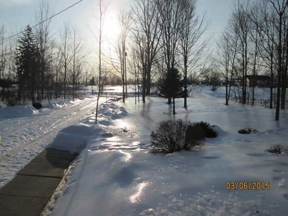 This the front yard of friends Lowell and Faye Greene from Olivet, Michigan (close to Lansing).  Lots of snow - then it rained - then the rain froze.  Does that look slick to you?  It is!