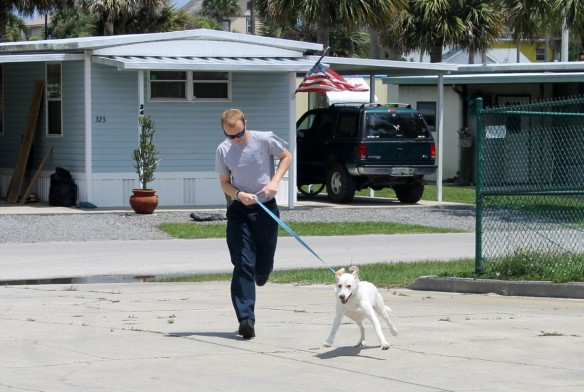 The station answers over 1,200 runs a year and is staffed 24/7.  Gibbs never spends time alone at the station, and every loves taking him out for walks and runs.