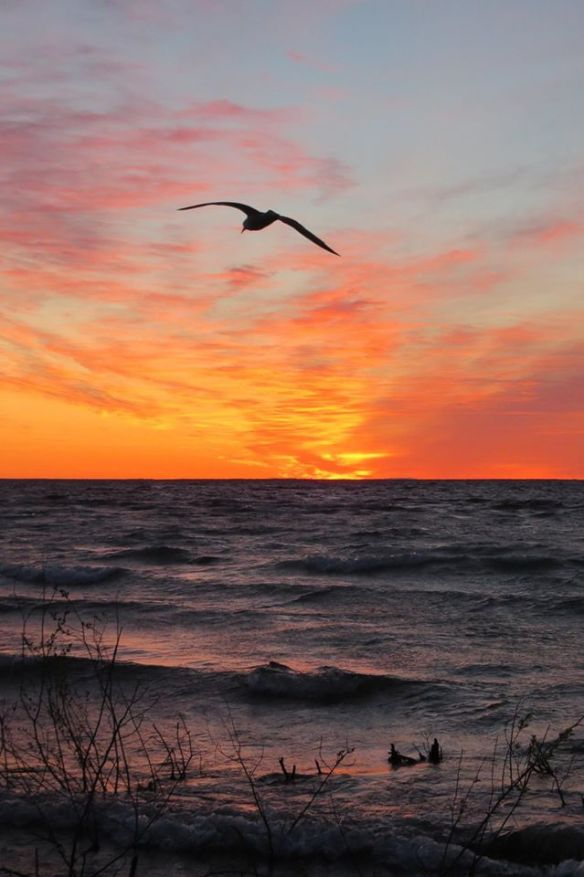 And, of course, those Mackinac sunrises just keep on getting better and better!  (Photo: Clark Bloswick)