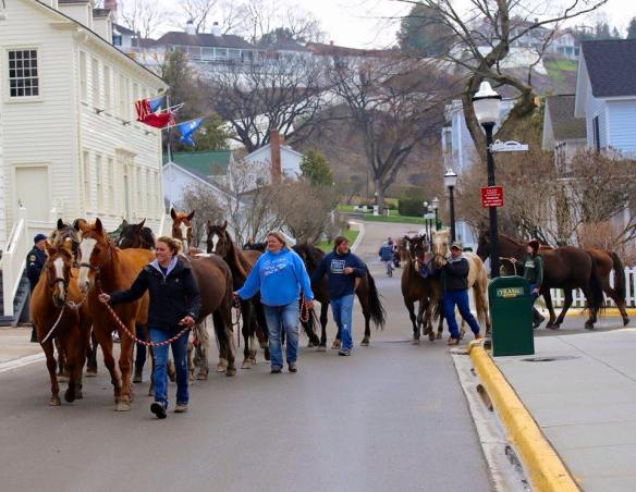 . . . . and horses are arriving daily also!  (Photo: Mackinac Island Tourist Bureau)