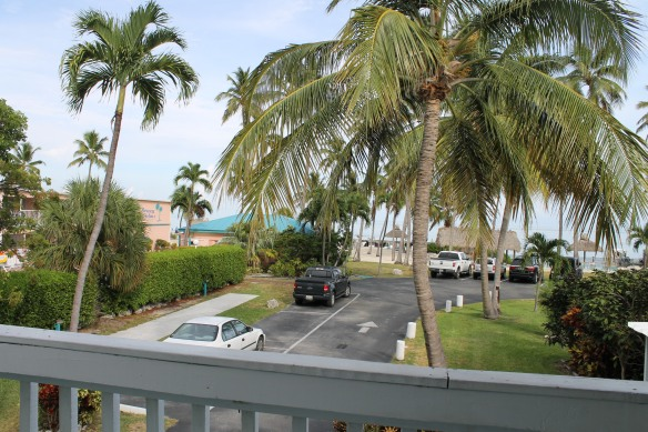 Breezy Palms Resort was our destination - nestled among the palm trees right on the Atlantic Ocean.