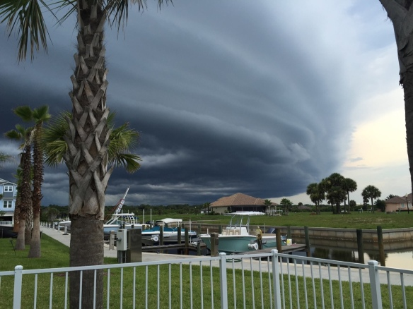 One of those awesome photographs that you might get once in a lifetime. Neighbor Missy captured this ominous shelf cloud coming in a few days ago.  Looks like a UFO, doesn't it.  Amazingly, we didn't even get a sprinkle of rain out of all this drama!