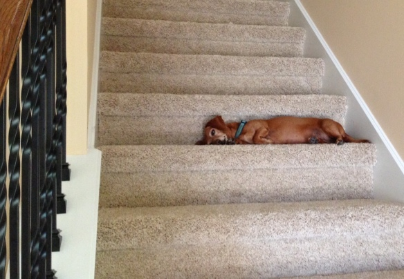 . . . so does the stairs.