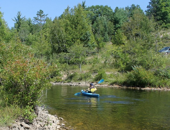 As Ted paddled into the middle of the stream (the Black River), we noticed the water was flowing pretty fast . . .