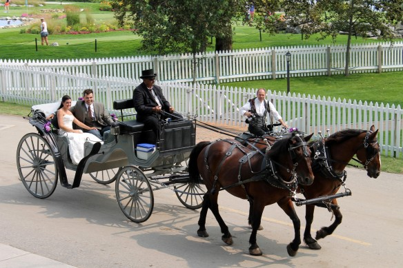 . . . and this one passed the condo after a wedding at Mission Point. Love that I got to photograph island wedding photographer Stephen Blair as he rode along beside the carriage. It takes a lot of stamina and skills to be a wedding photographer on Mackinac Island!