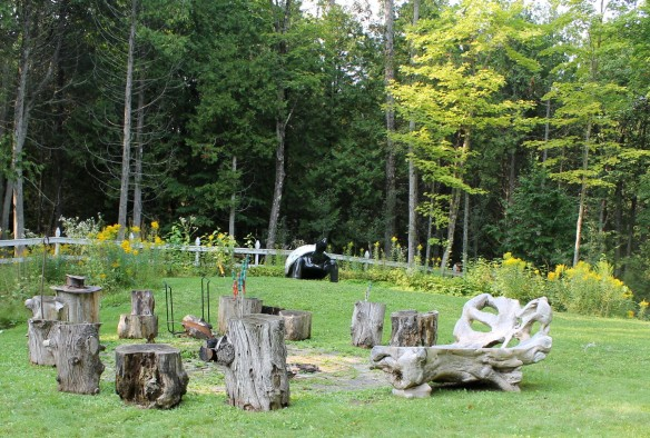 . . . tree trunk seating arranged around a firepit