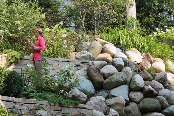 The backyard is a series of tiered gardens framed in huge boulders. I feel the need here to remind everyone that all of this is done with materials brought over on ferries and transported by horse-pulled drays. This was not done with heavy equipment. This was done with good old-fashioned hand labor.