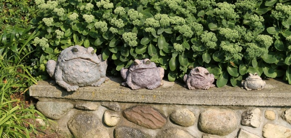 This is actually a park shared by the owners of two West Bluff homes. It is filled with beautiful gardens and whimsical creatures that have been added by both owners - like these frogs.