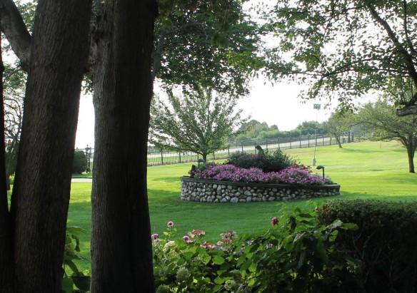 A view across the park.
