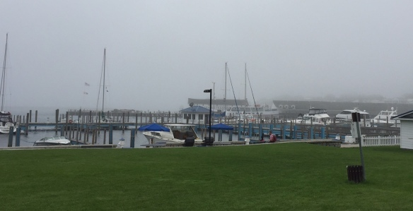 This morning was foggy, and I had to go off-island for an appointment and a little grocery shopping.