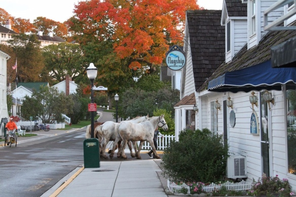I love everything about this photograph by Jackson Pearson. Horses going to rest, fall colors, a peaceful Market Street, even a street sweeper following along behind the horses!