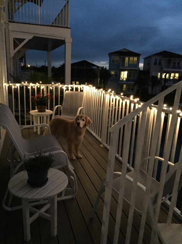 Another first! We rimmed the second floor deck with lights . . .
